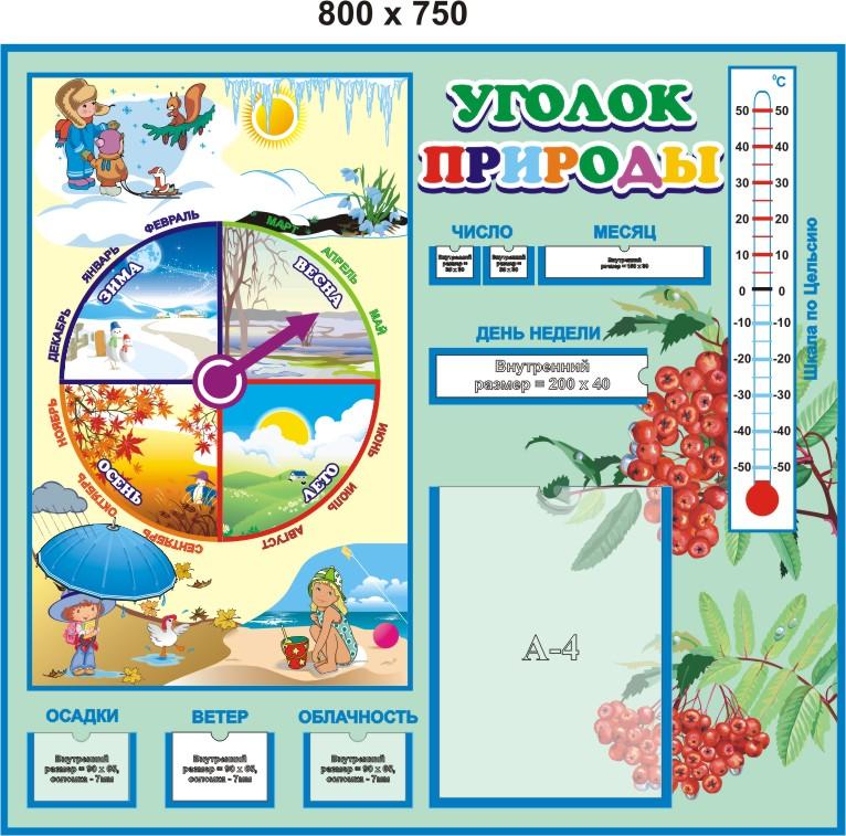 Схема дежурства в детском саду в картинках в уголке природы